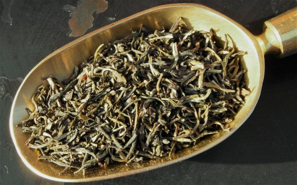 Nepal Kooca Sakhejung Grün
