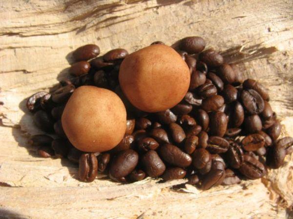 Lübecker Marzipan Kaffee