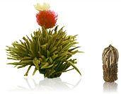 Juweltröpfchen 1 Blume