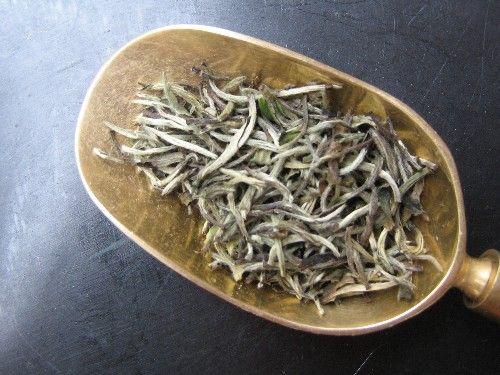 Silverneedle Pai Mu Tan